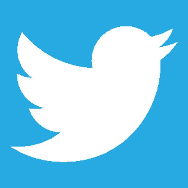 Twitter_White_Bird
