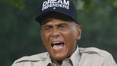 Photo of Belafonte Sues Martin Luther King Jr. Estate in NY