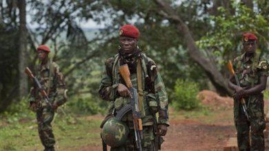 Photo of Report: Rebels Decimate C. African Republic Town