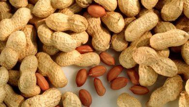 Photo of Child Peanut Allergy Treatment 'Breakthrough'