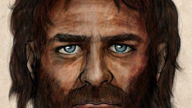 Photo of European Hunter-Gatherers Had Dark Skin, Blue Eyes