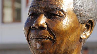 Photo of South Africa Celebrates Mandela, 20 Years of Democracy