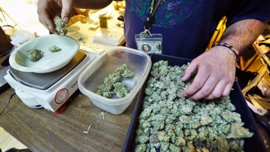Photo of Legal Pot in Colorado Hasn't Stopped Black Market