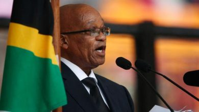 Photo of South African President on State Visit to Mozambique