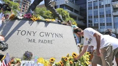 Photo of Fans Mourn Tony Gwynn, Flock to Statue