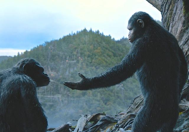 Apes-2