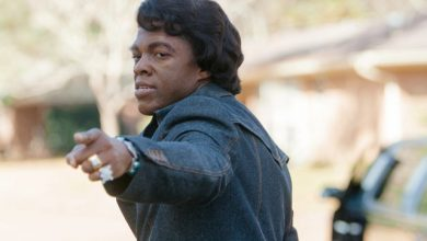 Photo of Movie Review: Get On Up By Dwight Brown
