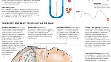 Photo of Sleep Disorders May Raise Risk of Alzheimer's, New Research Shows