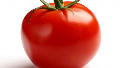 Photo of Tomatoes 'Cut Risk of Prostate Cancer by 20%'