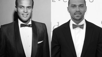 Photo of Outspoken About Ferguson, Jesse Williams May be This Generation's Harry Belafonte
