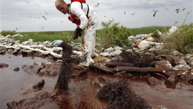 Photo of Five Years after Spill, Gulf Coast Waits for Fine Money