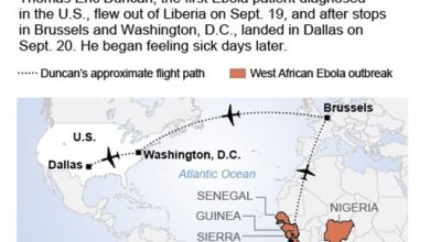 Photo of Why U.S. Is Reluctant to Issue Travel Ban on Ebola-Stricken West Africa
