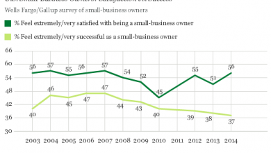Photo of Small-Business Owners Satisfied, but Fewer Feel Successful
