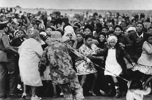 Black demonstrators cower from police dog during troubles at Guguletu township, near Cape Town, South Africa on Wednesday, August 12, 1976. Members of this police dog unit used tear dogs and 12 dogs to drive a crowd of some 3,000 blacks from Guguletu police station. (AP Photo)