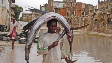 Photo of Somalia Questions Deal Giving Ex-U.K. Soldiers Fish Rights