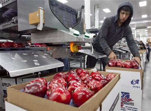 In this Oct. 13, 2014, file photo, Alfonso Martin helps pack apples for export at Valicoff Fruit in Wapato, Wash. For the first time in several years, all varieties of apples from the United States will go on sale in China. A deal was reached last week between officials for the United States and Chinese governments to grant access to all U.S. apple varieties. (AP Photo/Yakima Herald-Republic, Gordon King, File)