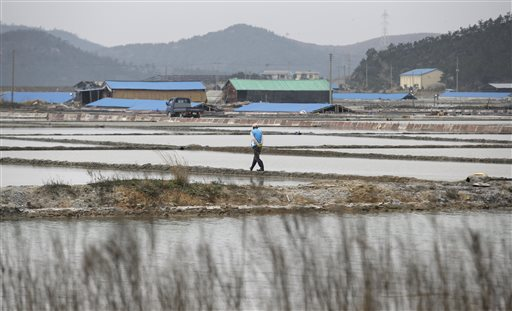 In this photo taken Thursday, April 3, 2014, a man walks through a salt farm on Sinui Island, south of Seoul, South Korea. Life as a salt-farm slave was so bad Kim Jong-seok sometimes fantasized about killing the owner who beat him daily. Freedom, he says, has been worse. In the year since police emancipated the severely mentally disabled man from the farm where he had worked for eight years, Kim has lived in a grim homeless shelter, preyed upon and robbed by other residents. He has no friends, no job training prospects or counseling, and feels confined and deeply bored. (AP Photo/Lee Jin-man)