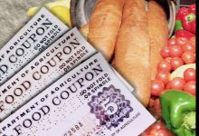Photo of Census: 1 in 5 Children on Food Stamps
