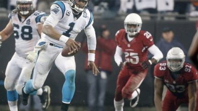 Photo of Panthers Still Alive in Playoffs Despite Trying Season