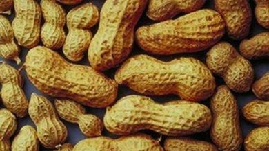 Photo of FDA Issues Warning as Peanuts Found in Cumin Spice