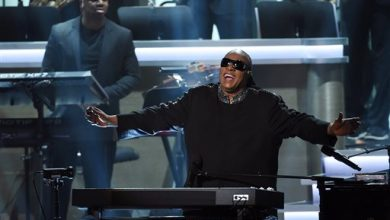 Photo of Why Did Stevie Wonder Want Fans to Shut their Eyes at Tribute Show?