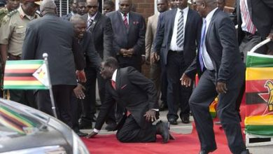 Photo of Robert Mugabe Falls Down Stairs, Tries to Get Photographers to Delete the Evidence