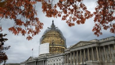 Photo of EDITORIAL: Why Won't Congress Leave D.C. Alone?