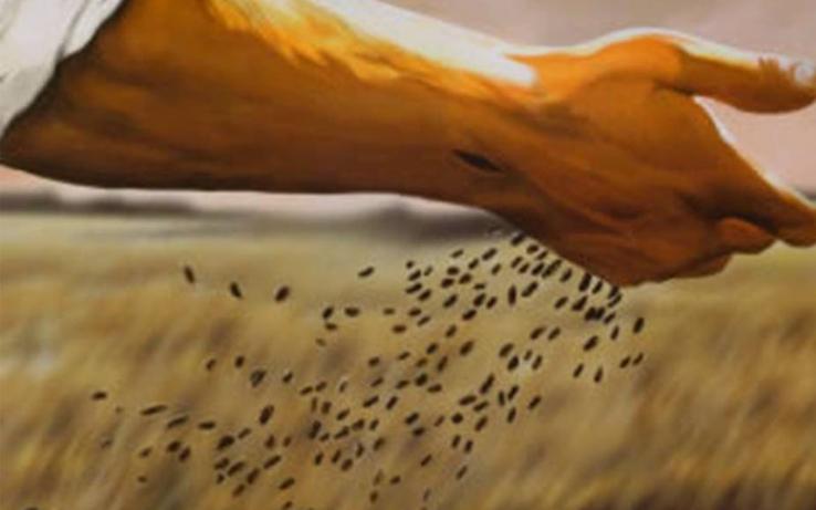 sower v. seed