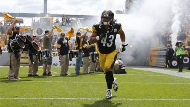 Photo of Steelers Safety Troy Polamalu Retires