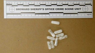 Photo of Flakka, Synthetic Drug Behind Increasingly Bizarre Crimes
