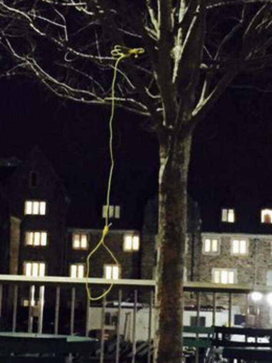Noose found hanging from a tree on Duke University campus. (Courtesy of Twitter)