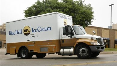Photo of Unusual Ice Cream Recalls Raise Questions About Cause