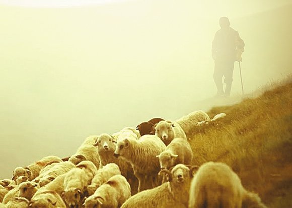Photo of The Lord is Our Protector, Shelter and Shepherd