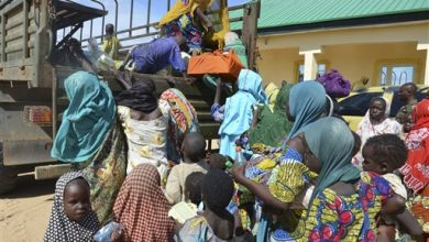Photo of Nigeria Rescues 71, Mostly Women and Girls, from Boko Haram