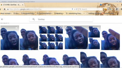 Photo of Google Rushes to Fix Software That Tagged Photo with Racial Slur