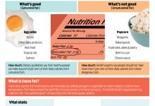 Photo of Why Saturated Fat is Useful for Human Body