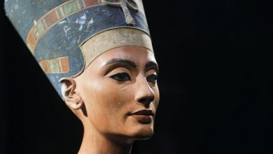 Photo of Expert with New Theory on Nefertiti's Tomb Invited to Egypt