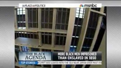 Photo of Mass Incarceration's Failure: America's Bias in Arrest, Conviction and Sentencing
