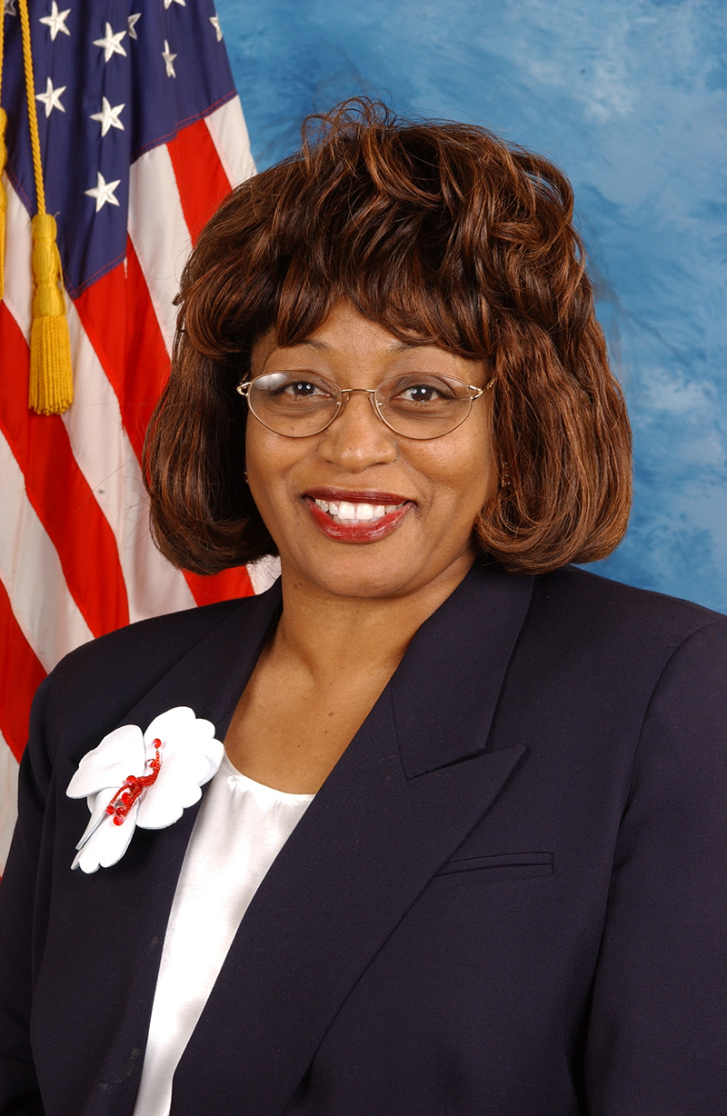 Photo of Judges Assigned to Rule on Makeup of Corrine Brown's Congressional District