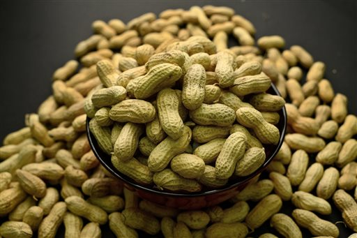This Feb. 20, 2015 photo shows an arrangement of peanuts in New York. In a statement released online Monday, Aug. 25, 2015 in the journal Pediatrics, a pediatricians' group is recommending that infants at high risk of peanut allergies be fed foods containing peanuts before they turn 1. (AP Photo/Patrick Sison)
