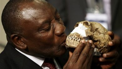 Photo of Study: Bones in South African Cave Reveal New Human Relative