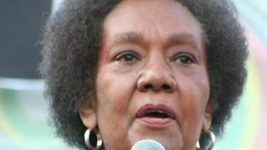 "Photo of Famed Psychiatrist, ""Isis Papers"" Author Frances Cress Welsing Dead at 80"