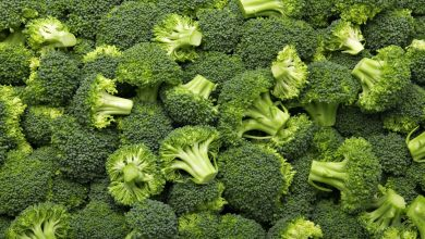 Photo of Eat broccoli, a cross that you can bear