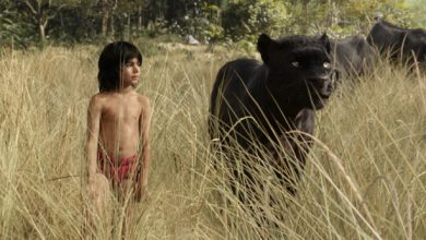 Photo of Film Review: The Jungle Book