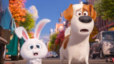 Photo of Film Review: The Secret Life of Pets