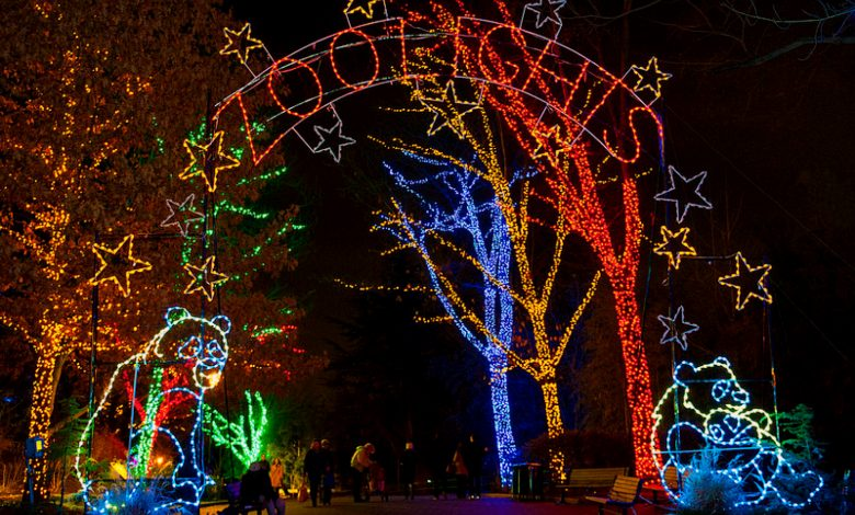 ZooLights is among the more popular holiday light displays in the region.