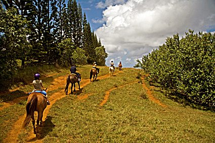 Riders enjoy the splendor of nature.