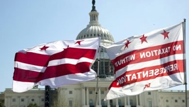 Photo of DC STATEHOOD ACTIVISTS MARCH TO US CAPITOL (PHOTOS BY NANCY SHIA)