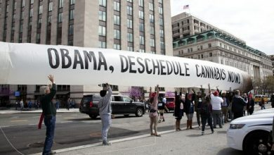 Photo of 51-FOOT INFLATED JOINT PRECEDES 420 DEMONSTRATION AT THE WHITE HOUSE