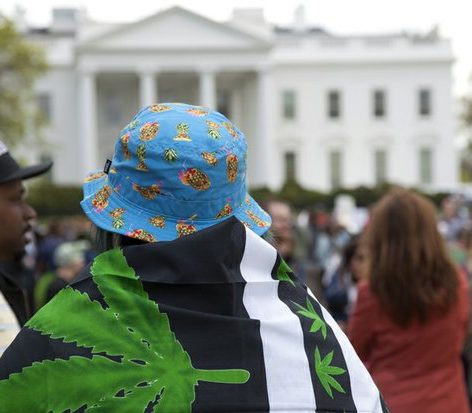 A man drapes himself with a marijuana flag in front of the White House. /Photo by Nancy Shia @nancy_shia